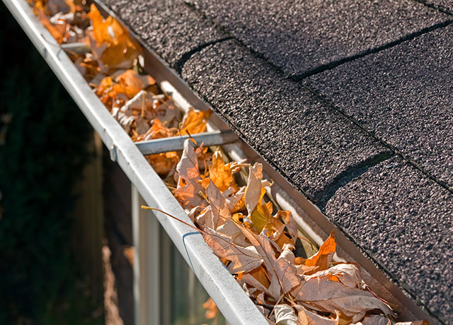 Alliance Protects Home Maintenance Gutters